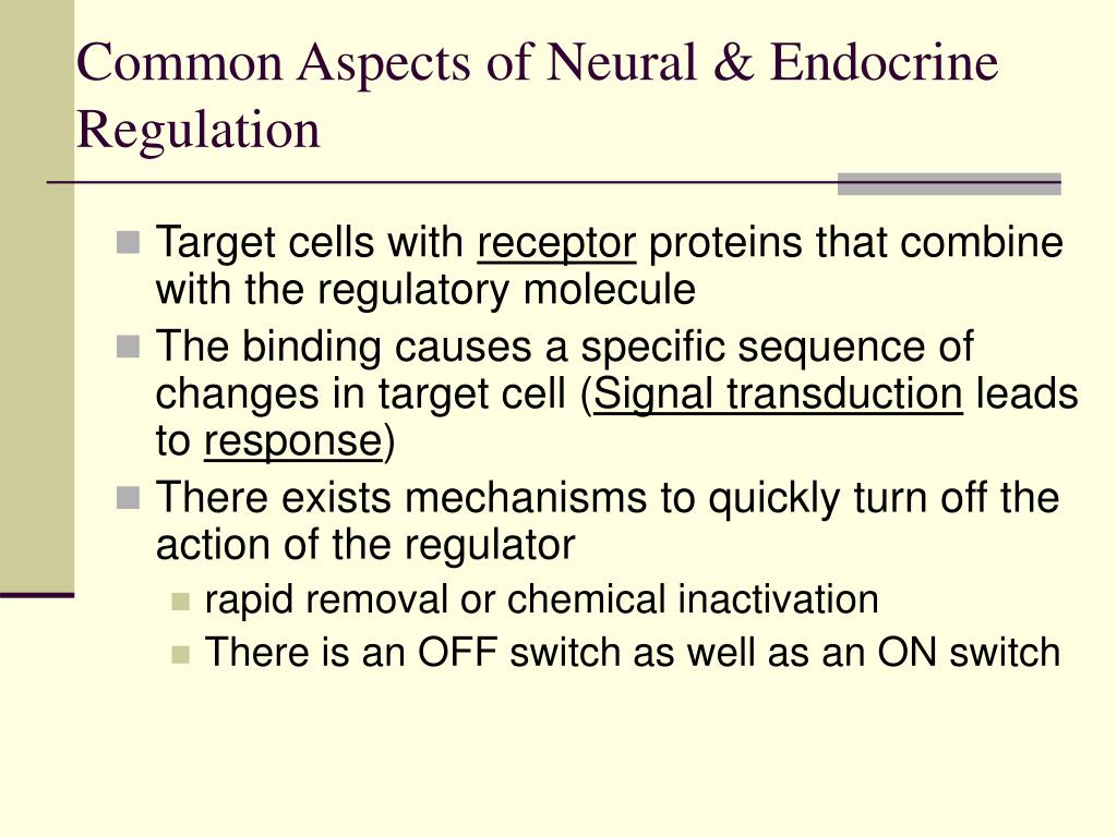 Common Aspects of Neural & Endocrine Regulation