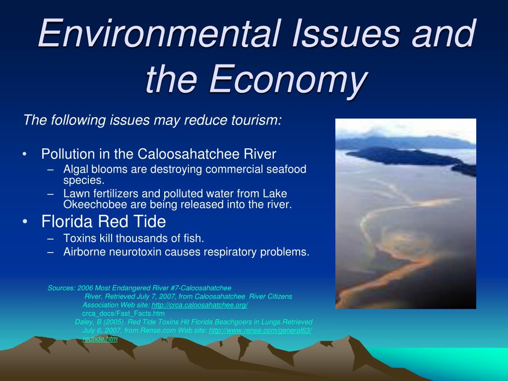 Environmental Issues and the Economy
