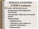 female anatomy uterus continued