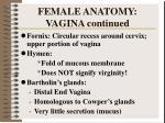 female anatomy vagina continued