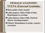 female anatomy vulva external genitalia