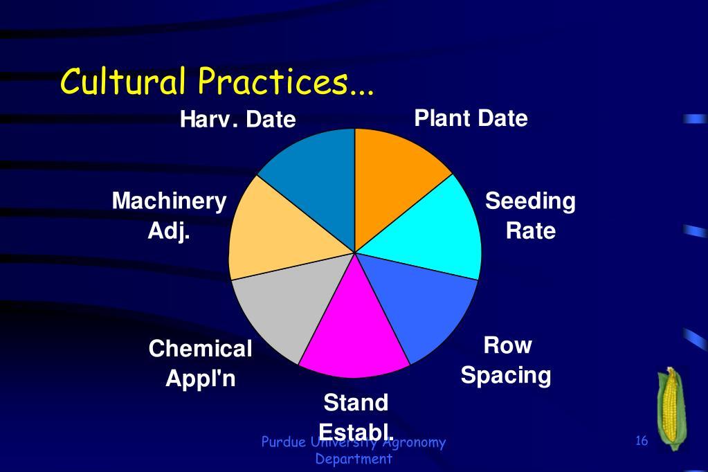 Cultural Practices...