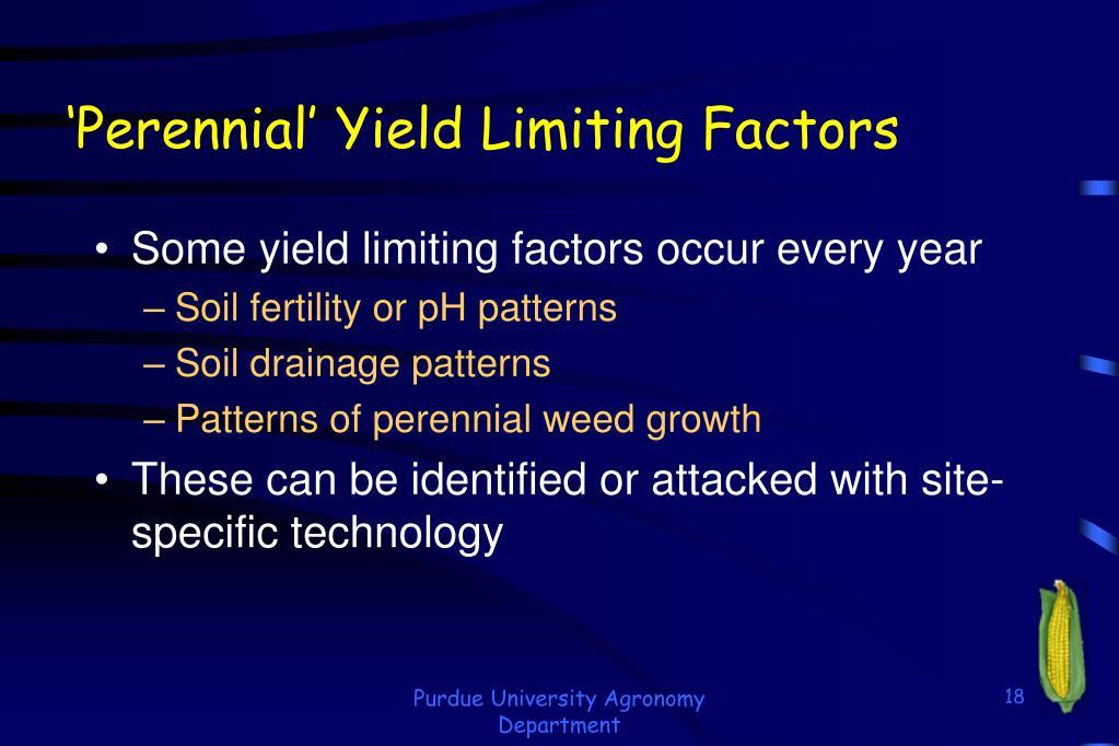 'Perennial' Yield Limiting Factors