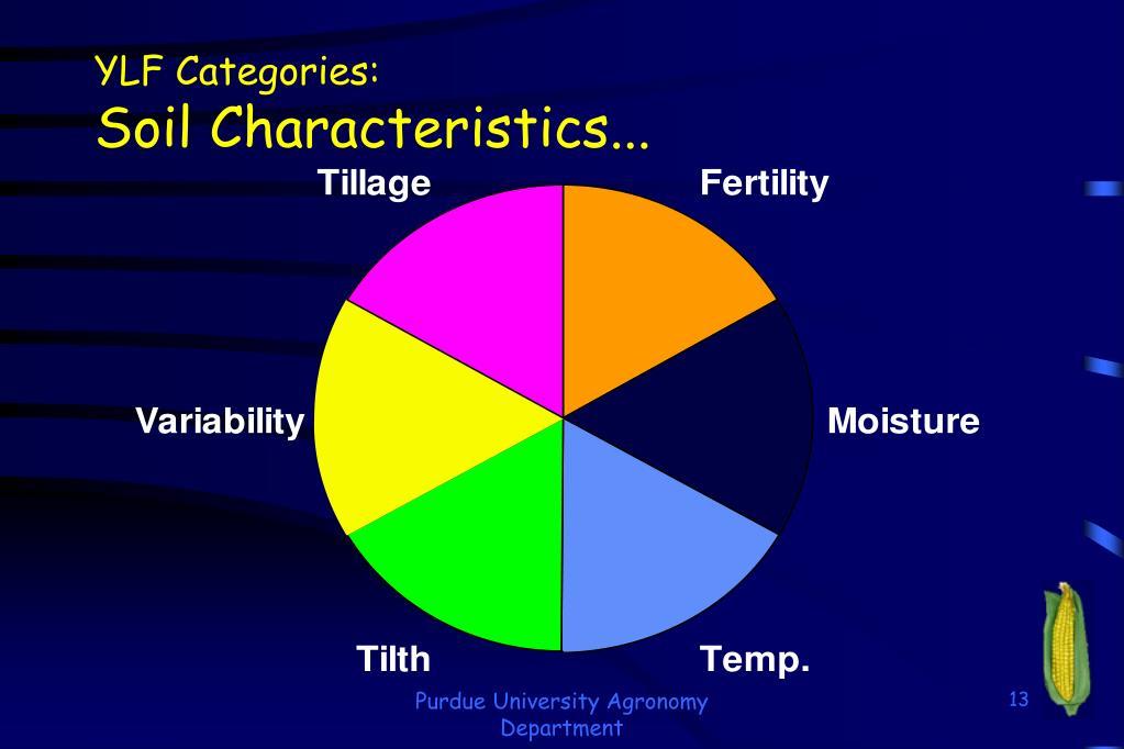 YLF Categories:
