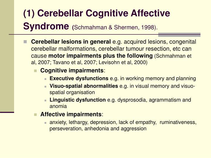 (1) Cerebellar Cognitive Affective Syndrome