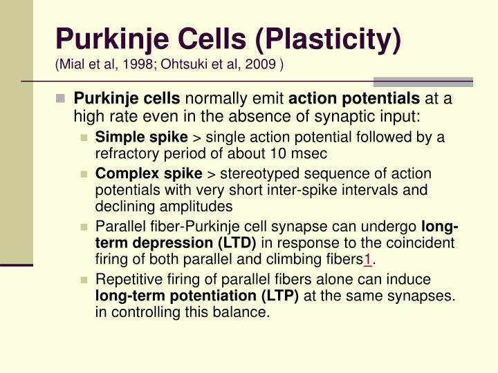 Purkinje Cells (Plasticity)