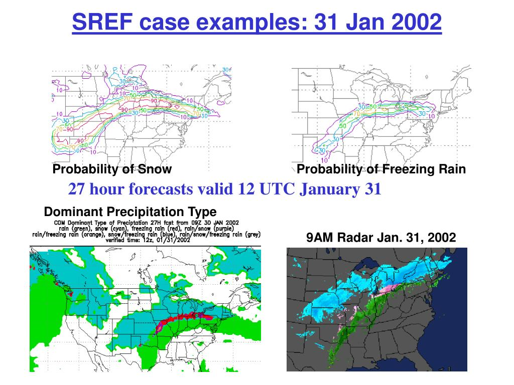 SREF case examples: 31 Jan 2002