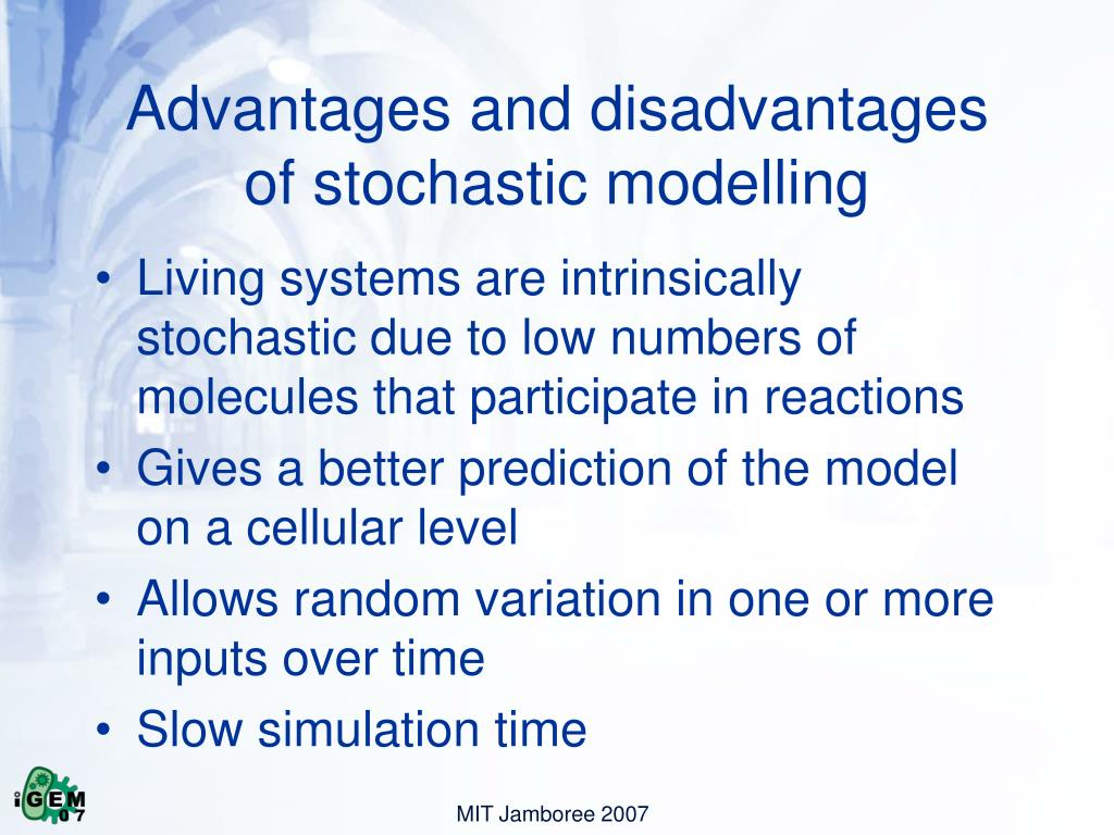 Advantages and disadvantages of stochastic modelling