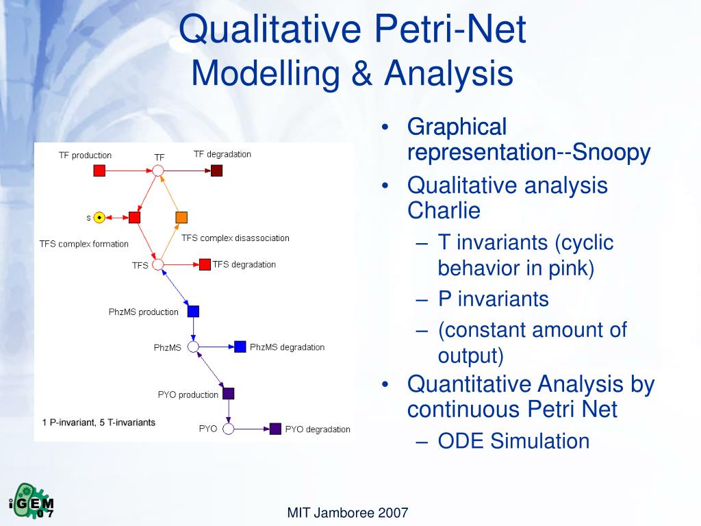 Qualitative Petri-Net