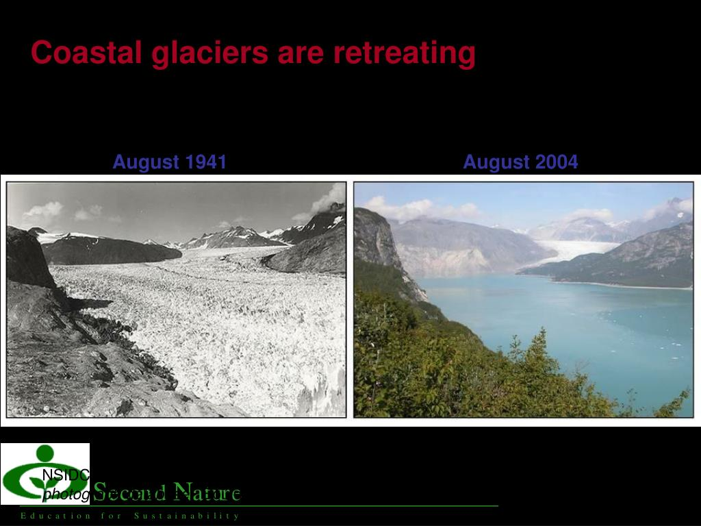 Coastal glaciers are retreating