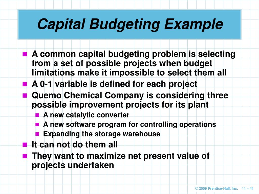 net present value and software project