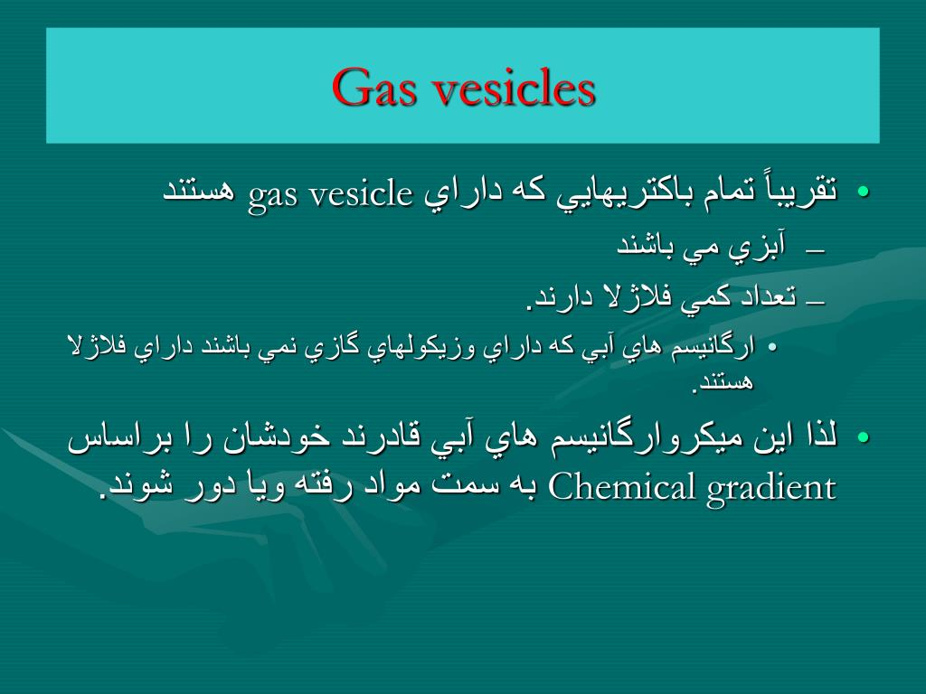 Gas vesicles