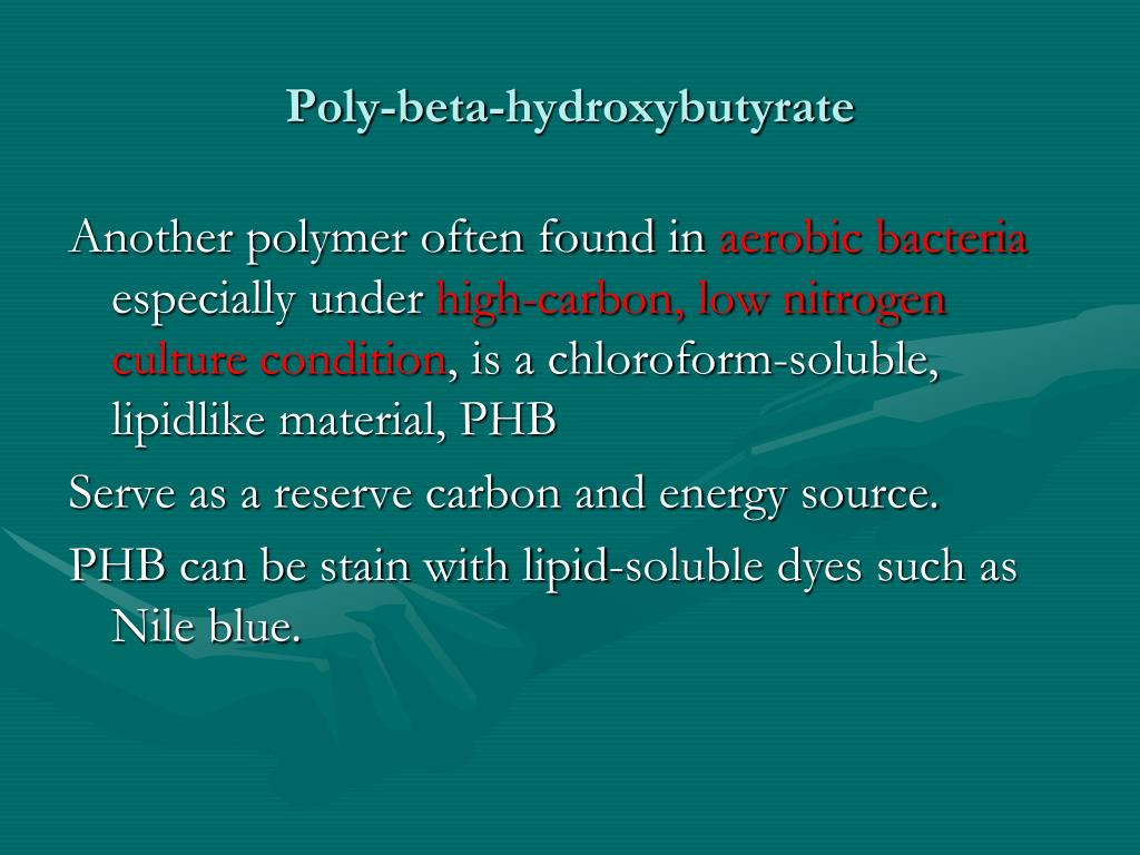 Poly-beta-hydroxybutyrate