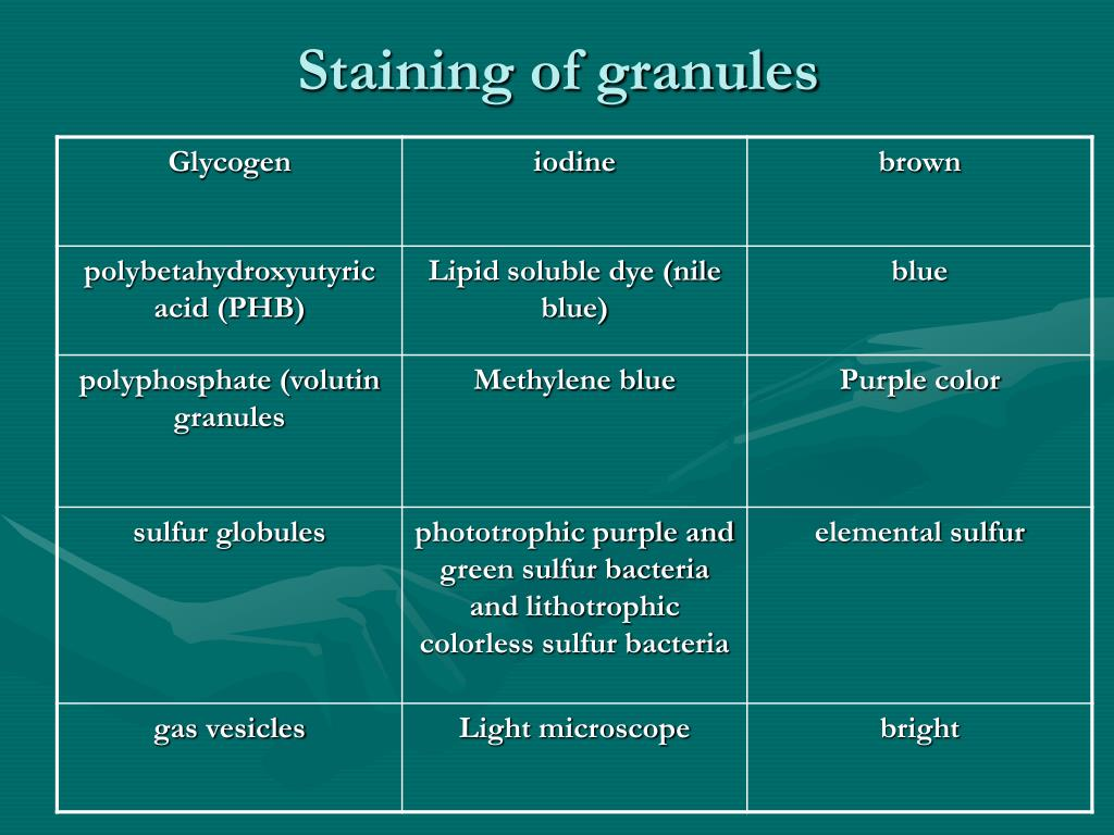 Staining of granules