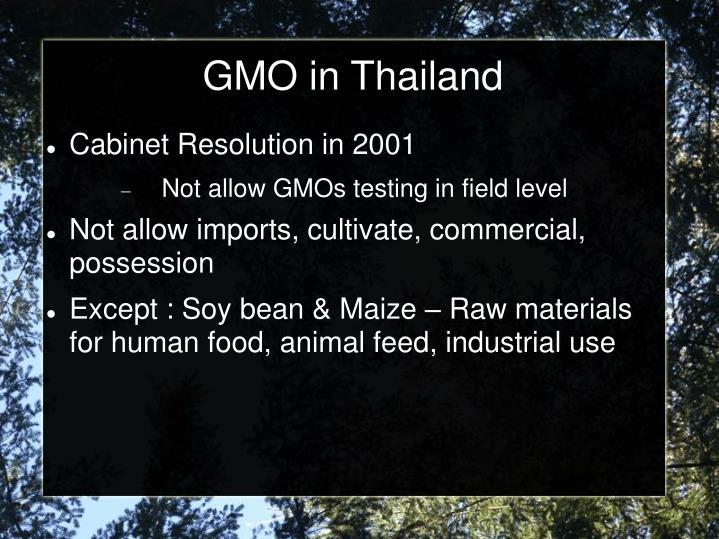 GMO in Thailand