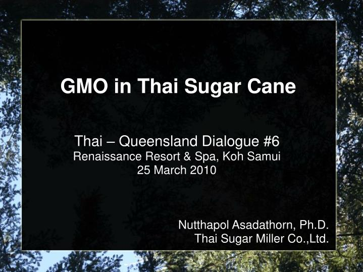 Thai – Queensland Dialogue #6