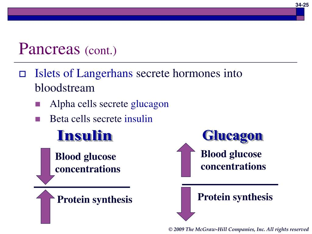 Blood glucose concentrations
