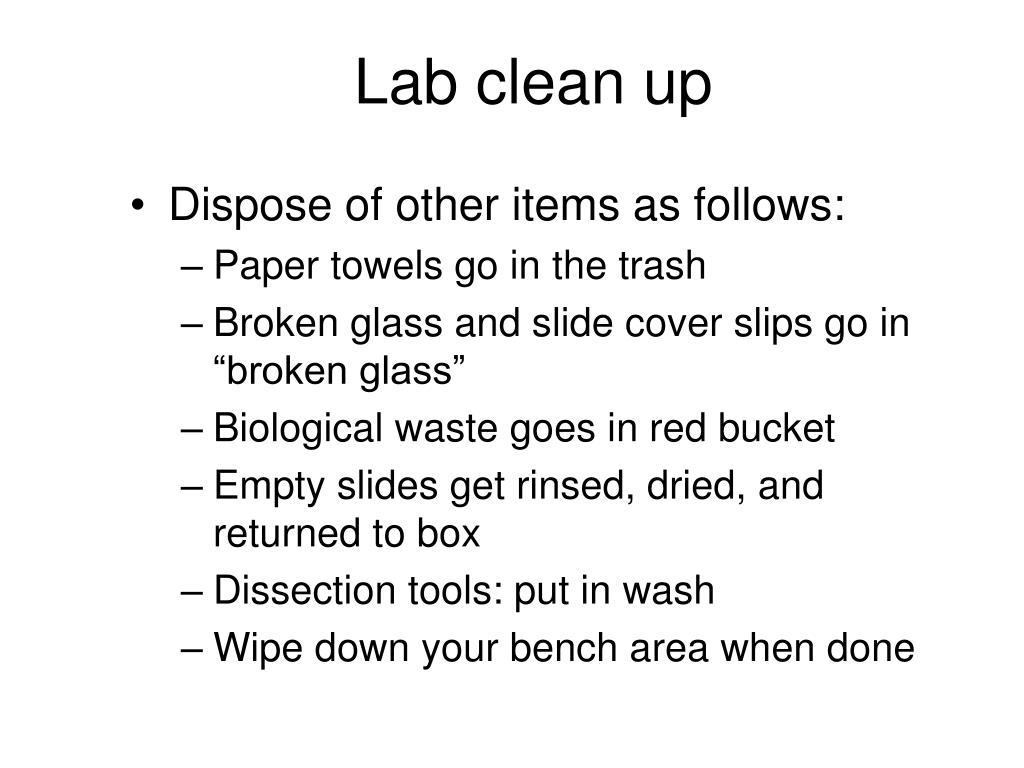 Lab clean up