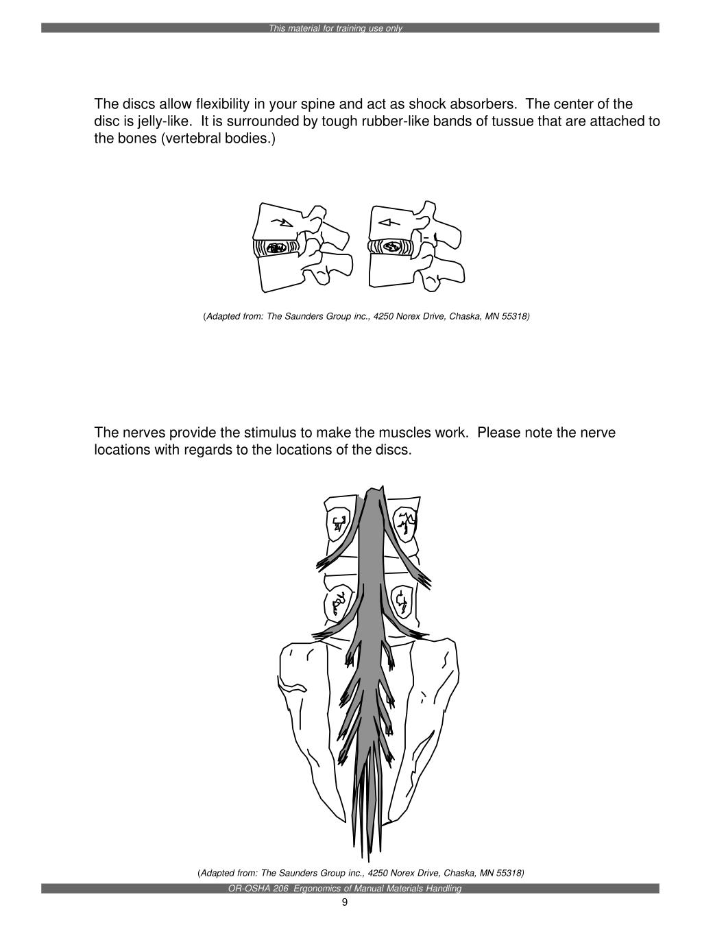 The discs allow flexibility in your spine and act as shock absorbers.  The center of the