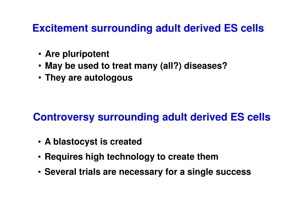 Excitement surrounding adult derived ES cells