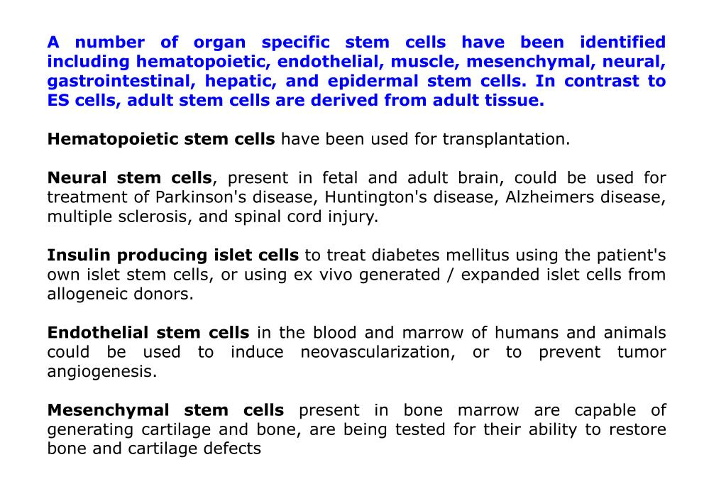 A number of organ specific stem cells have been identified including hematopoietic, endothelial, muscle, mesenchymal, neural, gastrointestinal, hepatic, and epidermal stem cells. In contrast to ES cells, adult stem cells are derived from adult tissue.