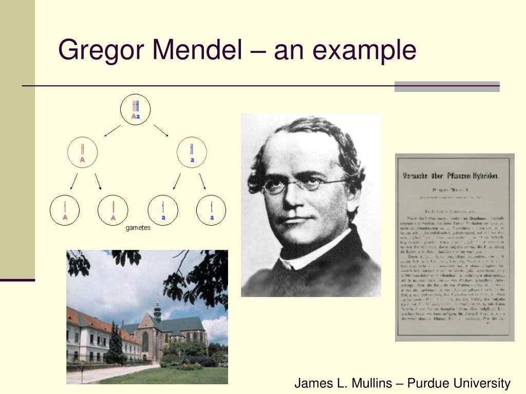 Gregor Mendel – an example