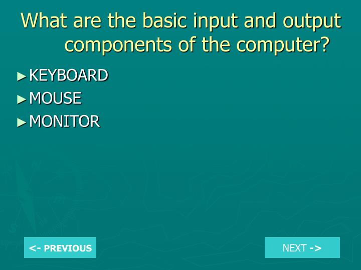What are the basic input and output components of the computer?