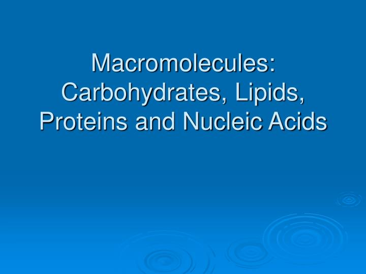Macromolecules carbohydrates lipids proteins and nucleic acids l.jpg
