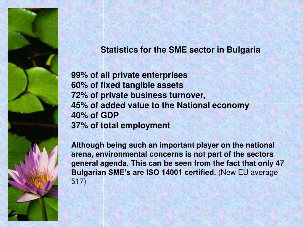 Statistics for the SME sector in Bulgaria