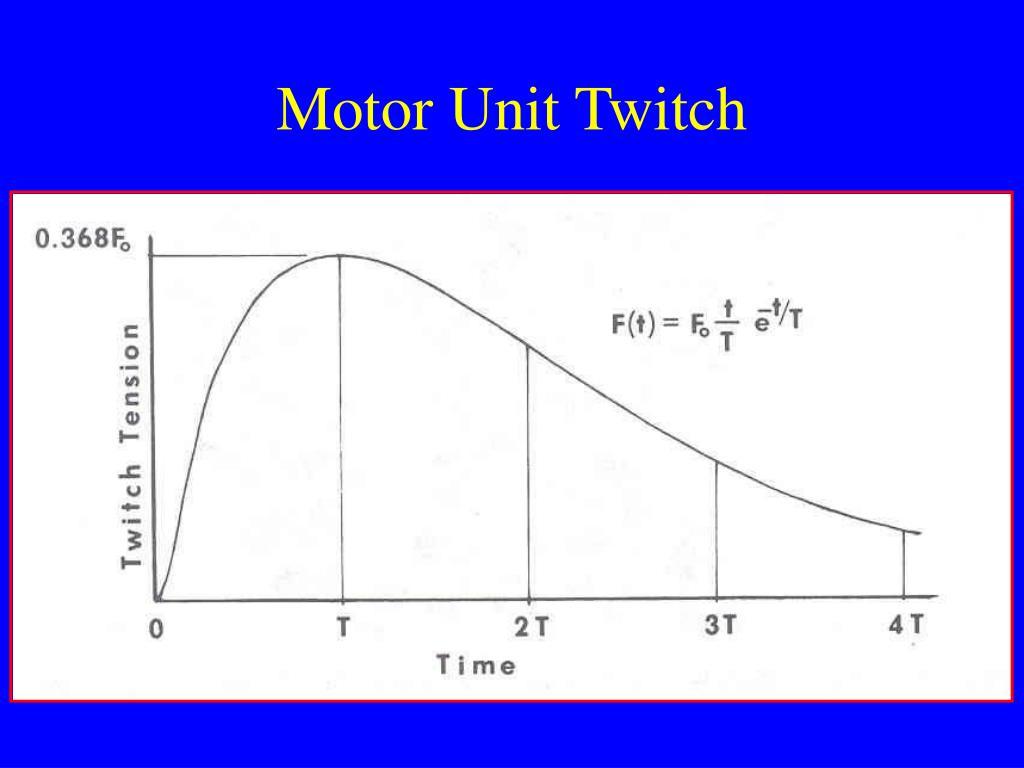 Motor Unit Twitch