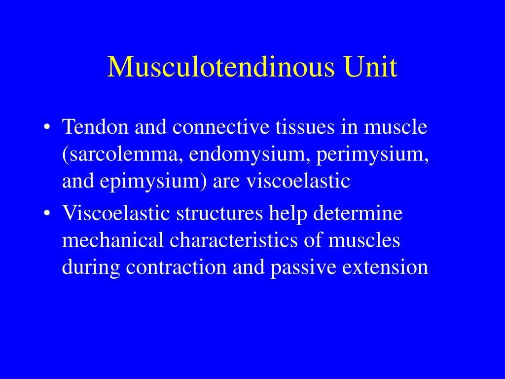 Musculotendinous Unit