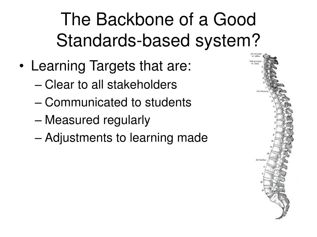 The Backbone of a Good Standards-based system?