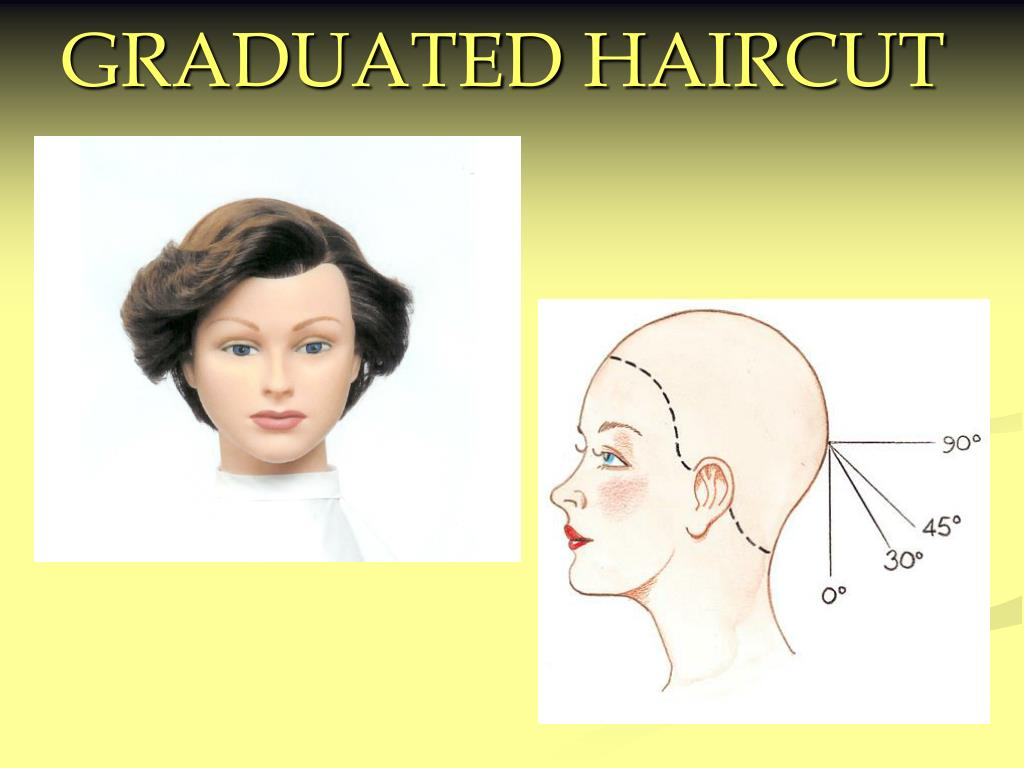 PPT - GRADUATED HAIRCUT PowerPoint Presentation - ID:357355