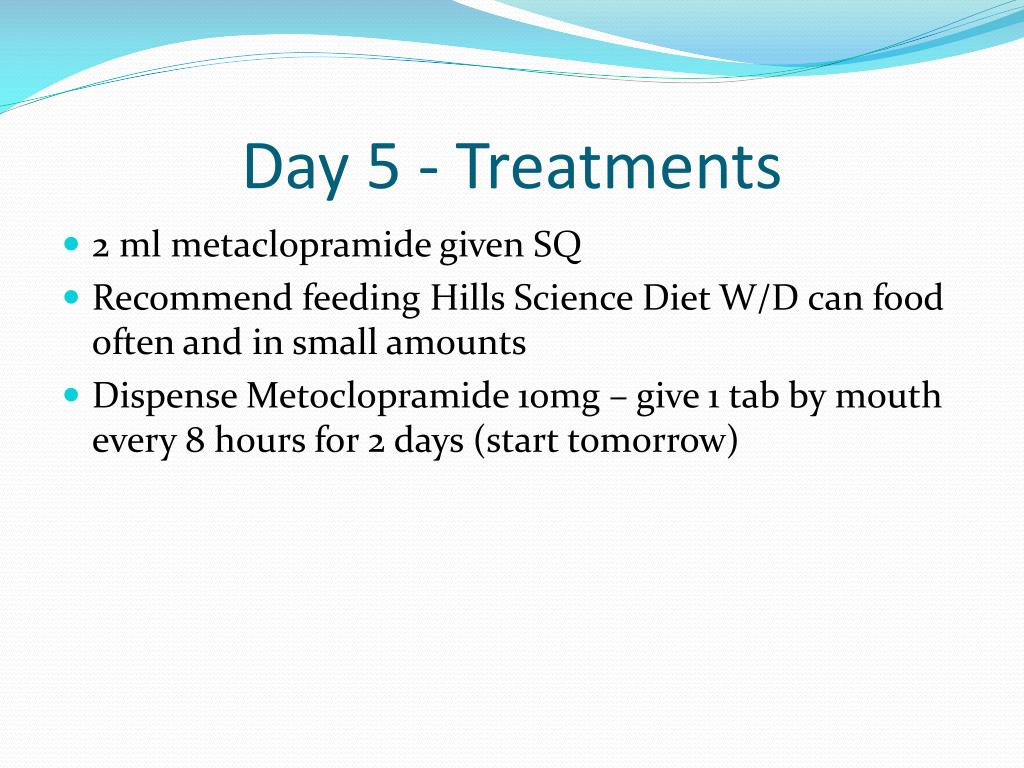 Day 5 - Treatments