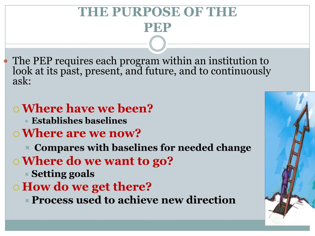 THE PURPOSE OF THE