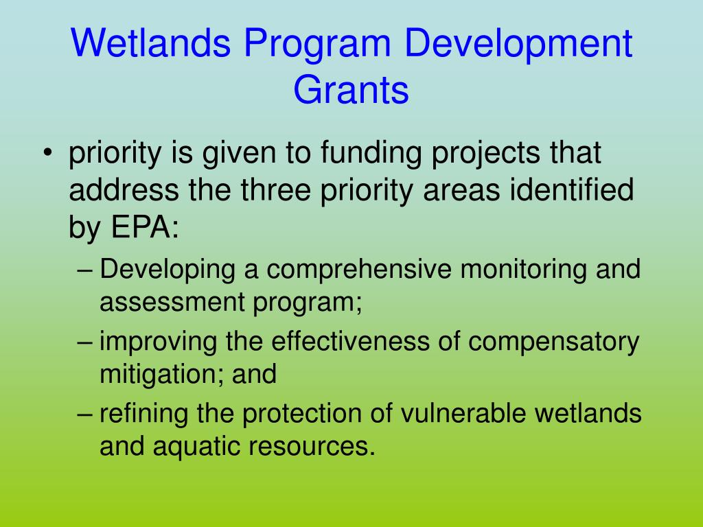 Wetlands Program Development
