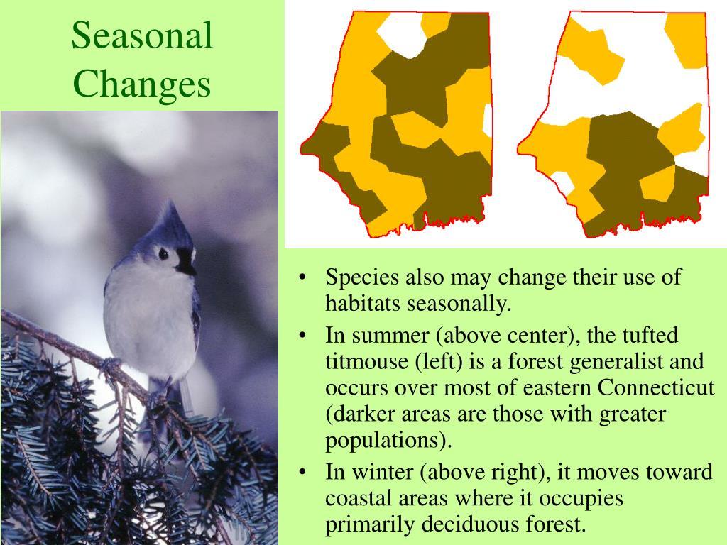 Seasonal Changes