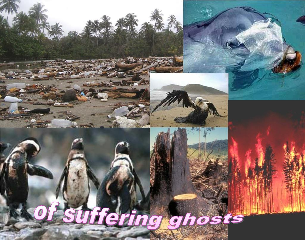 of suffering ghosts