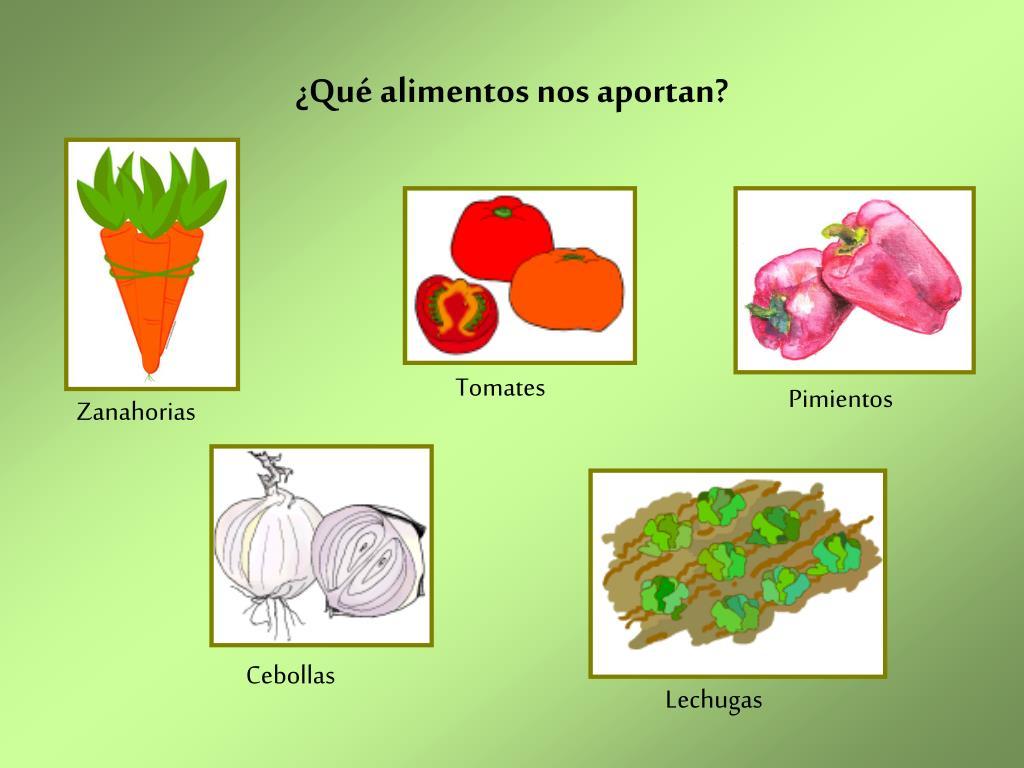 ¿Qué alimentos nos aportan?