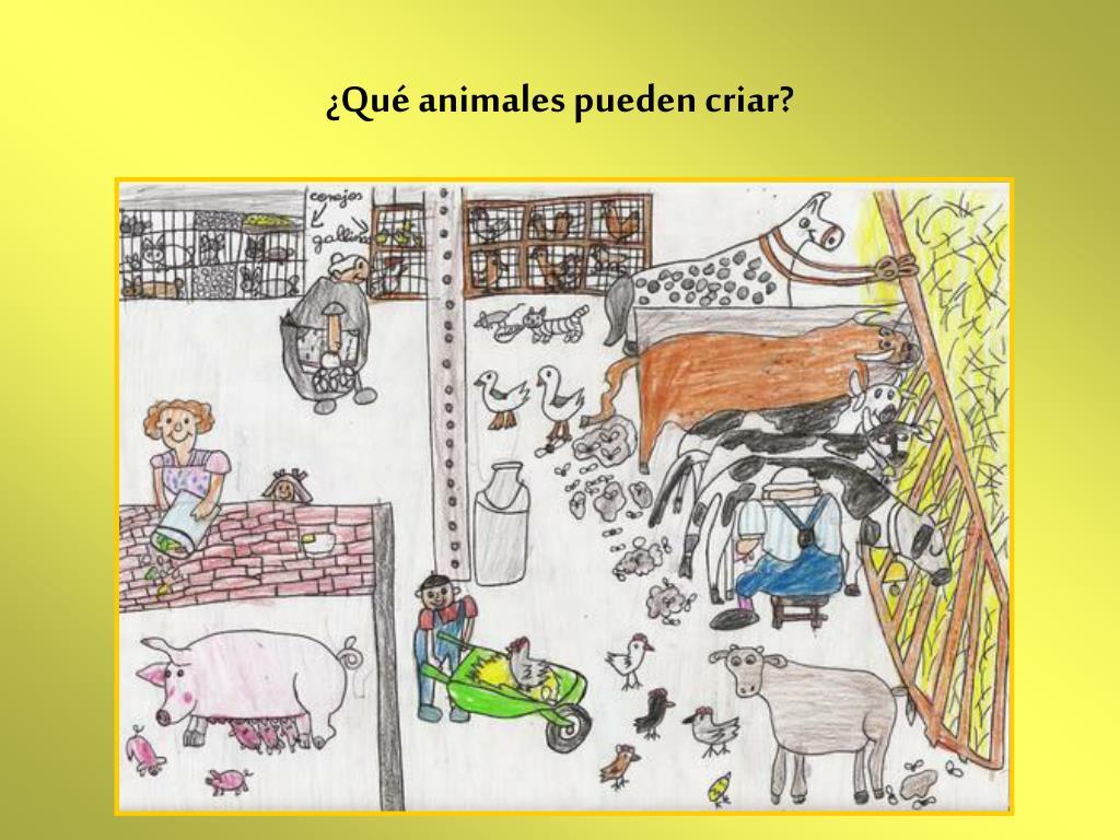 ¿Qué animales pueden criar?