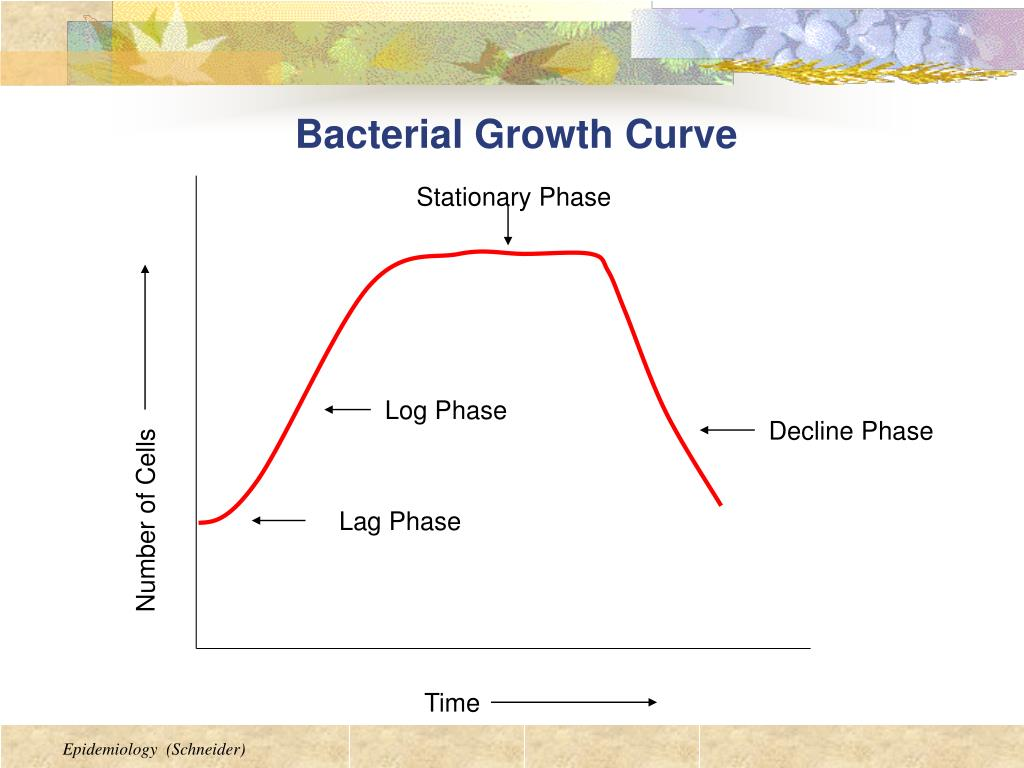 bacteria and growth temperature Bacterial growth is the asexual  psychrophiles are extremophilic cold-loving bacteria or archaea with an optimal temperature for growth at about 15 °c .