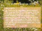 the shifting scenes of life18
