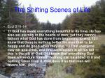 the shifting scenes of life22