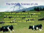 the shifting scenes of life4