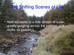 the shifting scenes of life5
