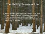 the shifting scenes of life9
