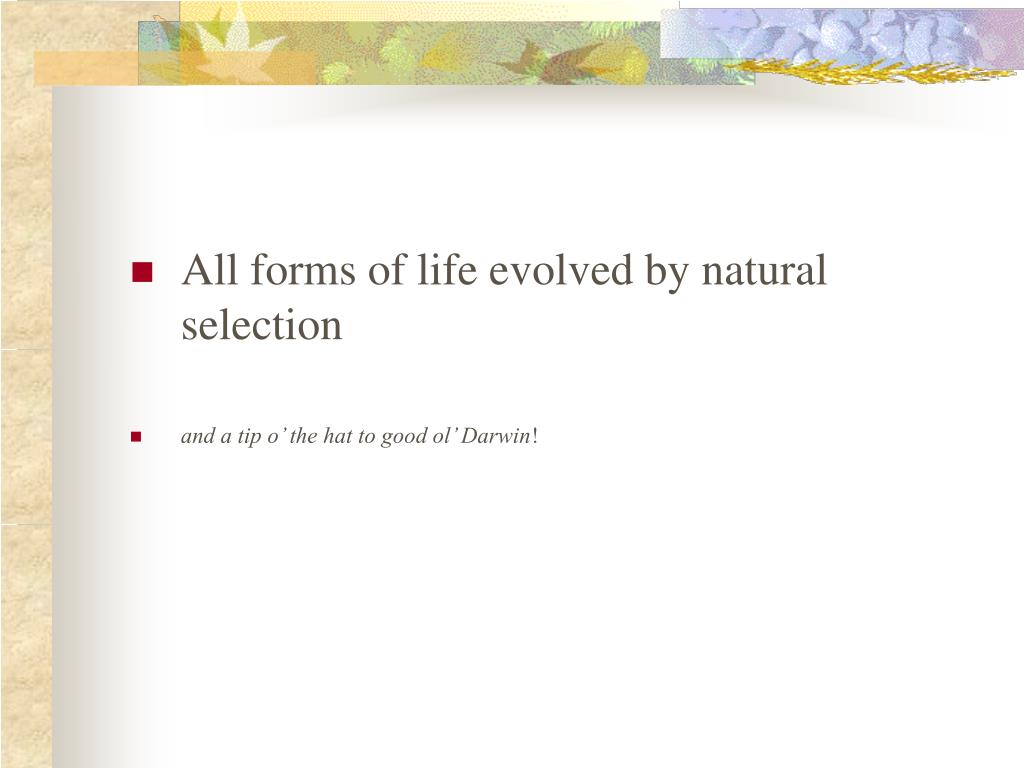All forms of life evolved by natural selection