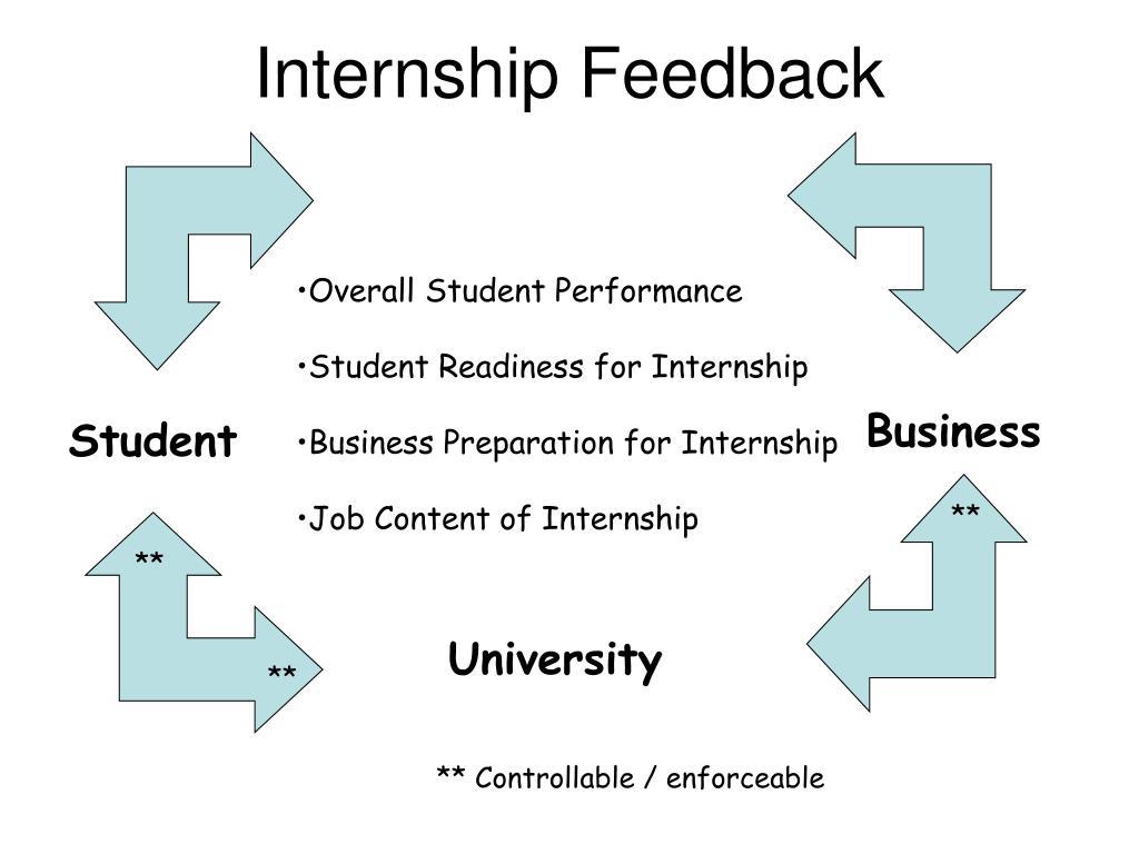 Internship Feedback