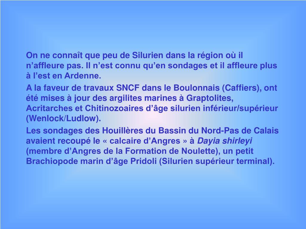 On ne connaît que peu de Silurien dans la région où il n'affleure pas. Il n'est connu qu'en sondages et il affleure plus à l'est en Ardenne.