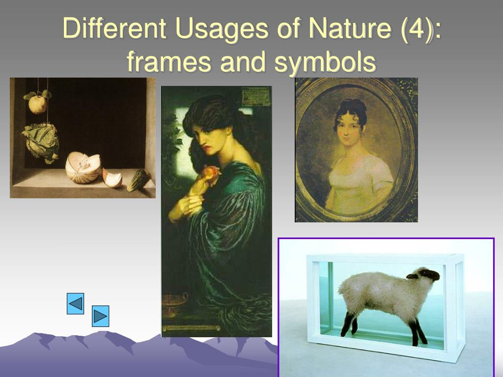 Different Usages of Nature (4): frames and symbols